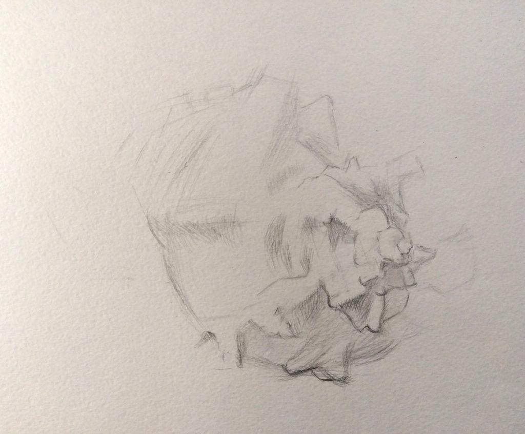 рисуем карандашом поэтапно ракушку